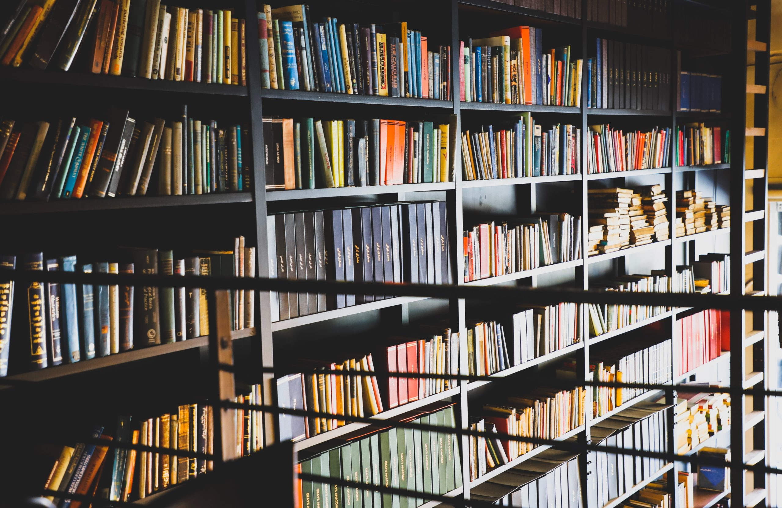 7 must-read books for project managers, besides PMBOK